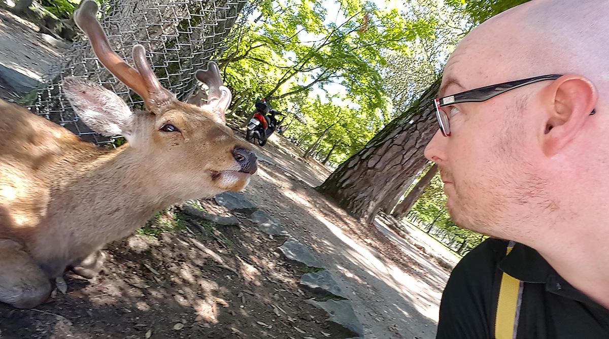A friend in Nara